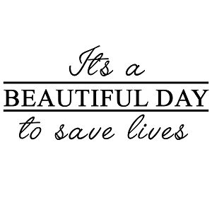 Grey's It's a Beautiful Day to Save Lives Derek Shepherd Vinyl Sticker Car Decal