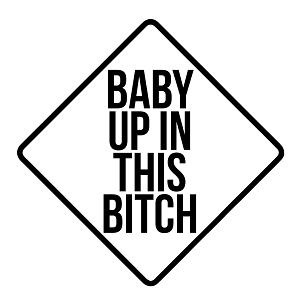 Baby Up in This Bitch Parody Funny Vinyl Sticker Car Decal