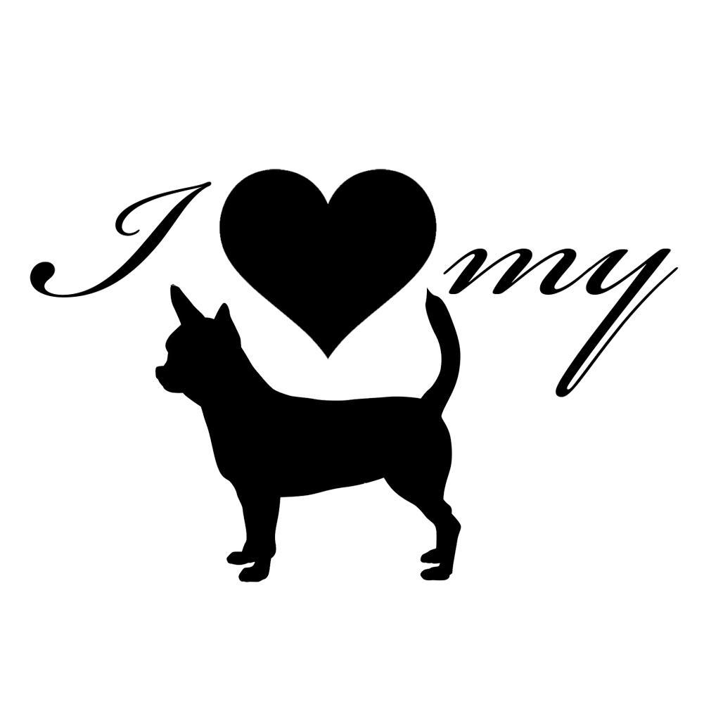 White Chihuahua with heart decal