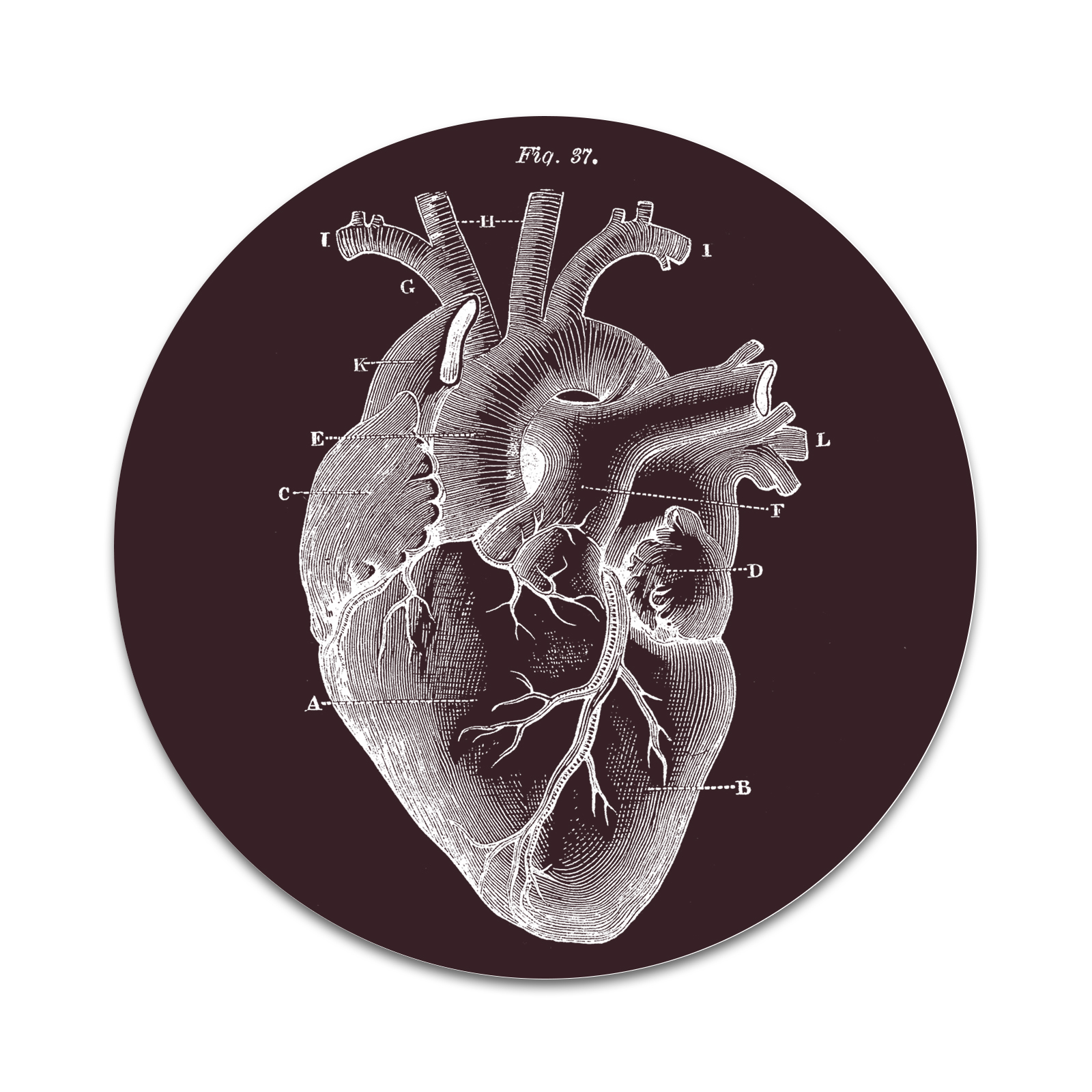 Anatomical Heart 2 Sticker Set For Pop Grip Stent For Phones And