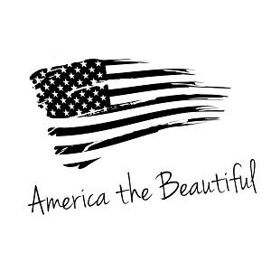 Patriotic America the Beautiful USA Flag Vinyl Sticker Car Decal