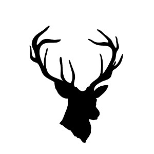 Deer Buck Head Hunting Vinyl Sticker Car Decal