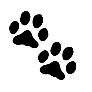 Dog Paws Silhouette Vinyl Sticker Car Decal