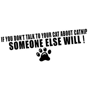 Talk to Your Cat About Catnip Vinyl Sticker Car Decal