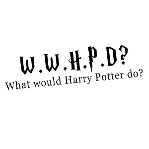 What Would Harry Do? HP Inspired Vinyl Sticker Car Decal