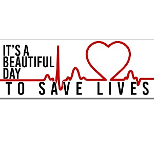 It's A Beautiful Day To Save Lives Anatomy McDreamy Heart Monitor Quote Grey Sticker 8'