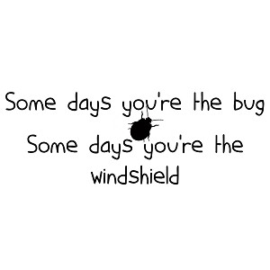 Funny Somedays You're the Bug Somedays You're the Windshield Vinyl Sticker Car Decal