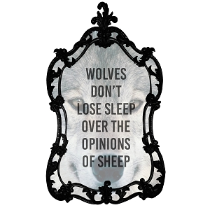 Wolves Don't Lose Sleep Over The Opinions Of Sheep Quote Wolf Sticker 5