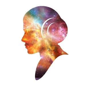 Princess Outline Space Galaxy Leia Silhouette Carrie RIP Sticker 5